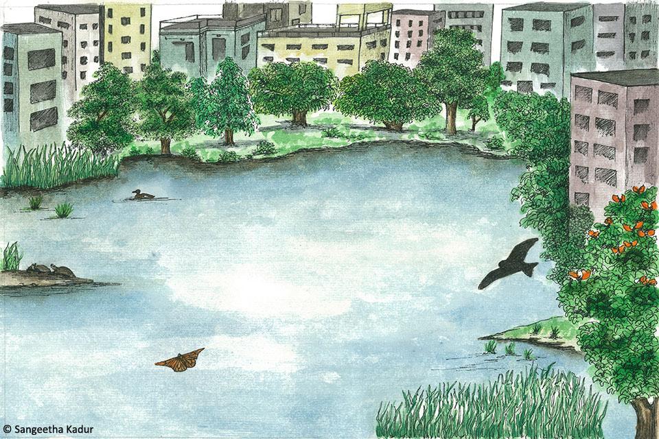 1_City Pond