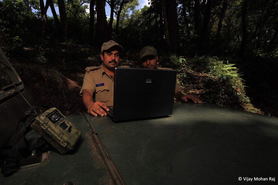 08 Boraiah camera trap cc resize_1