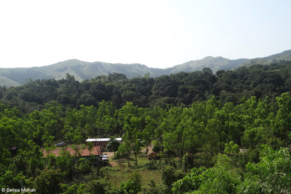 2_View of BNC