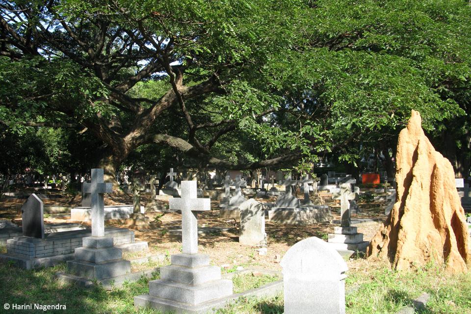 8_Cemetery