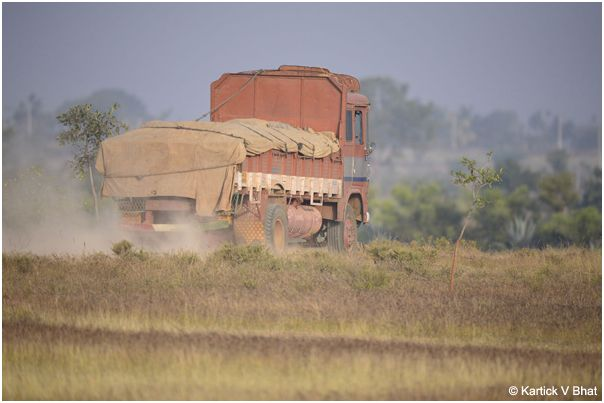 A_truck_driving_through_the_grassland_around_the_reserve