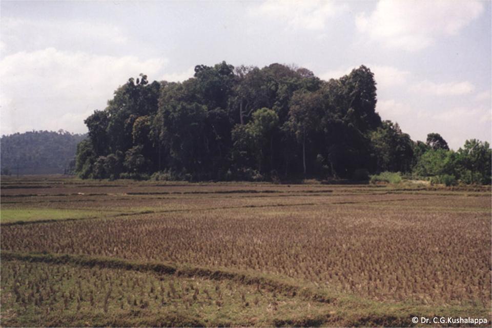 Devakad Island