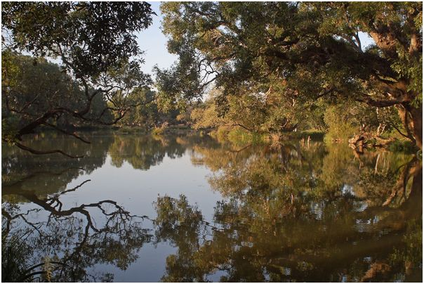 Placid_and_serene_River_Cauvery_during_the_drier_months_at_Dubare.