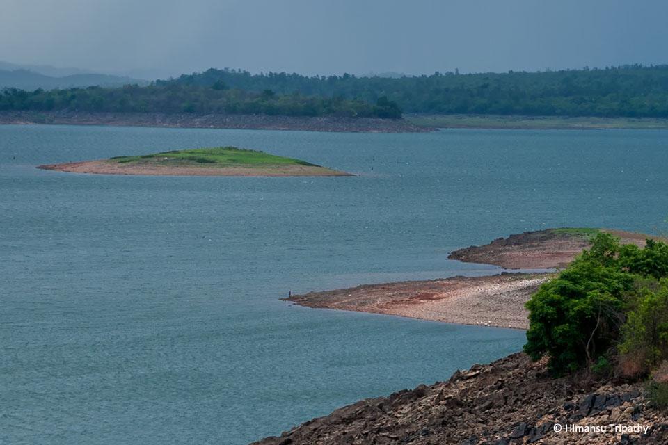 River Tern island