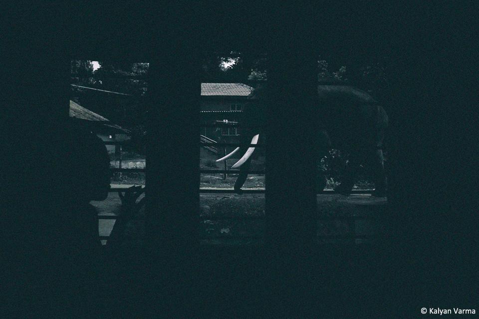 1KV_ElephantWindow